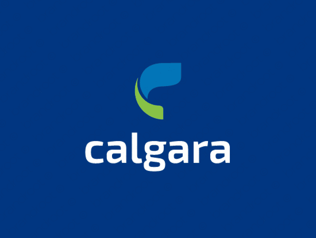 Brandable Domain Name - calgara.com
