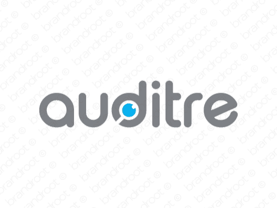 Brandable Domain Name - auditre.com