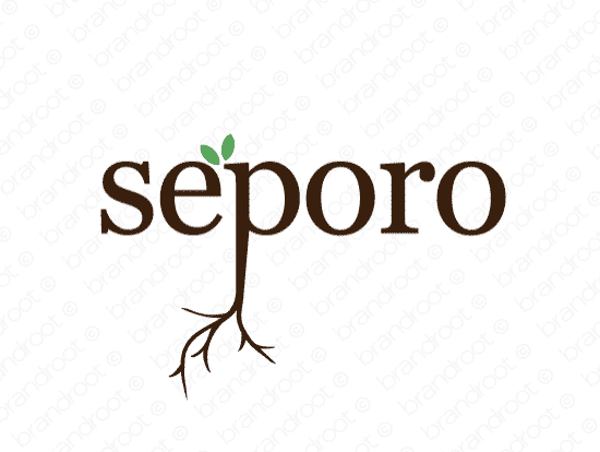 Brandable Domain Name - seporo.com