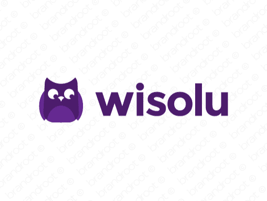 Brandable Domain Name - wisolu.com