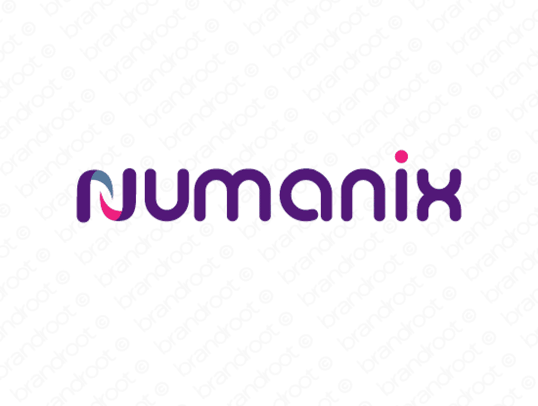 Numanix logo design included with business name and domain name, Numanix.com.