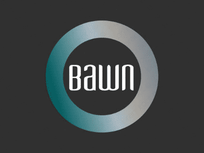 Bawn logo design included with business name and domain name, Bawn.com.