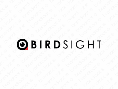 Birdsight logo design included with business name and domain name, Birdsight.com.