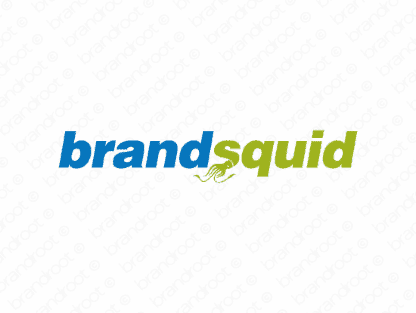 Brandsquid logo design included with business name and domain name, Brandsquid.com.